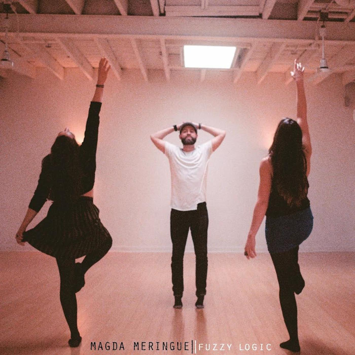 Fuzzy Logic Album Cover Art